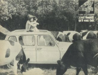 cow (France, 1964)
